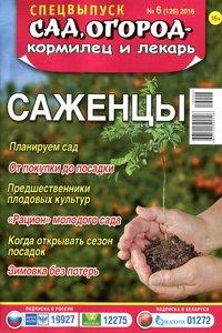 Спецвыпуск Сад, огород - кормилец и лекарь № 6  2016 Саженцы